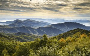 Black Mountain North Carolina Real Estate